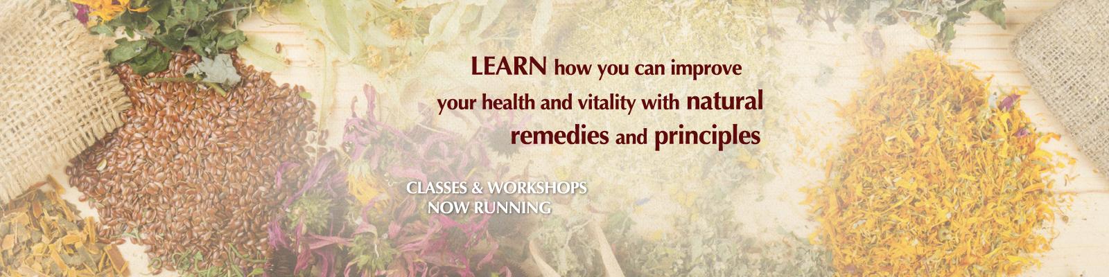 vital-slide-workshops-2